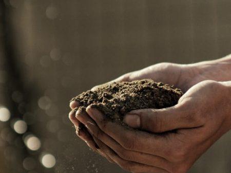 Soils & Sands