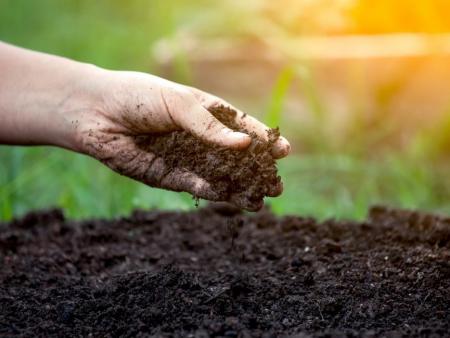 Soil Conditioners & Fertilisers
